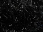 Black-Fossil-1.11
